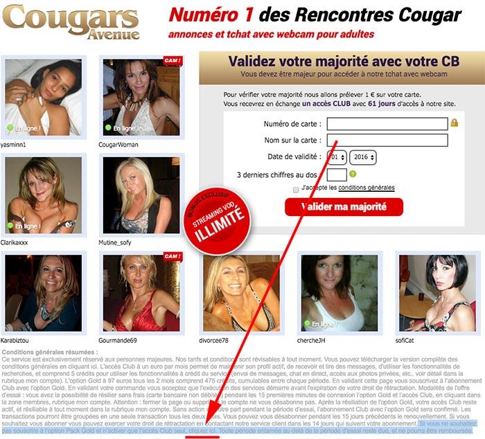 cougars avenue gratuit